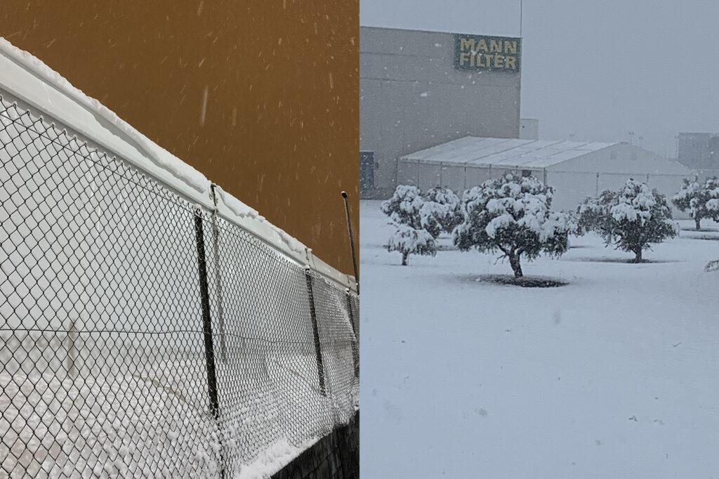 carpas resistentes a la nieve